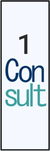 1 Consult